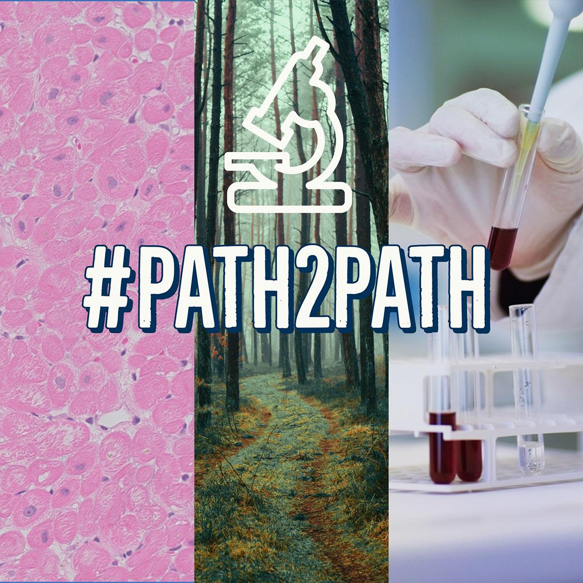 Path2Path